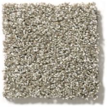 Shaw Floors Value Collections Proposal Net Homestead 00174_E9669