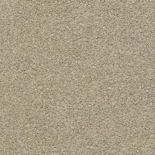 Shaw Floors Value Collections Save The Date Net Pea Gravel 00177_E9670