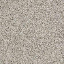 Shaw Floors Foundations Elemental Mix I Net Silver Lining 00572_E9677