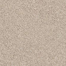 Shaw Floors Foundations Elemental Mix II Net Gentle Rain 00171_E9678