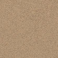 Shaw Floors Foundations Elemental Mix II Net Bridle Leather 00270_E9678