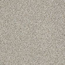 Shaw Floors Foundations Elemental Mix II Net Silver Lining 00572_E9678