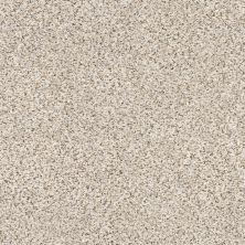 Shaw Floors Value Collections Elemental Mix III Net Pixels 00170_E9679