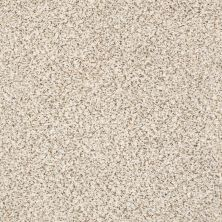 Shaw Floors Value Collections Elemental Mix III Net Swiss Coffee 00173_E9679