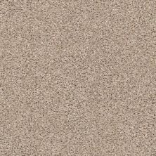 Shaw Floors Value Collections Elemental Mix III Net Acreage 00176_E9679