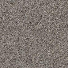 Shaw Floors Value Collections Elemental Mix III Net Antique Pin 00571_E9679