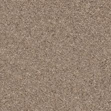 Shaw Floors Value Collections Elemental Mix III Net Cobble Drive 00771_E9679