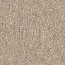 Shaw Floors Foundations Natural Balance 15 Net Slate 00500_E9681