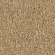 Shaw Floors Foundations Natural Balance 15 Net Wicker 00701_E9681