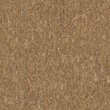 Shaw Floors Foundations Natural Balance 15 Net Birch 00702_E9681