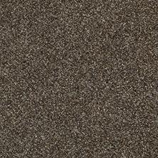 Shaw Floors Bellera Perpetual I Oatmeal 00108_E9692