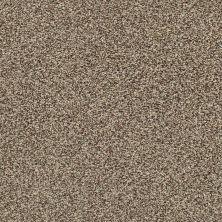 Shaw Floors Bellera Perpetual I Freckles 00109_E9692