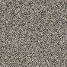 Shaw Floors Bellera Perpetual I Shadow 00504_E9692