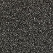 Shaw Floors Bellera Perpetual I Truffle 00506_E9692