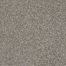 Shaw Floors Bellera Perpetual II Fog 00503_E9693