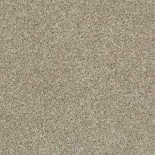 Shaw Floors Shake It Up (t) Stucco 00112_E9698