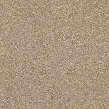 Shaw Floors Shake It Up (t) Croissant 00220_E9698