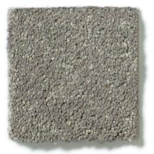Shaw Floors See The World III Classic 12′ Stone Washed 00522_E9712