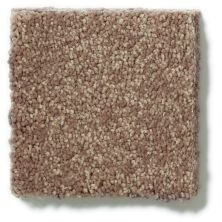 Shaw Floors See The World III Classic 12′ Mocha Froth 00752_E9712