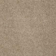 Shaw Floors Foundations Keen Senses II Grounded 00796_E9715