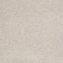 Shaw Floors Foundations Always Ready II Balanced Beige 00193_E9718