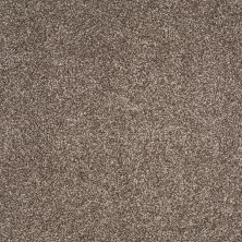 Shaw Floors Foundations Always Ready II Cobble Brown 00798_E9718