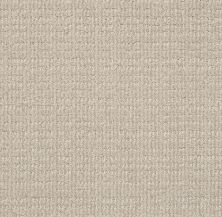 Shaw Floors Subtle Essence Studio Taupe GF00173_E9720