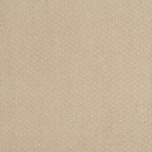 Shaw Floors Infallible Instinct Soft Honey 00182_E9721