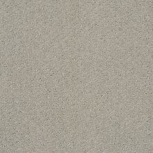 Shaw Floors Foundations Infallible Instinct Silhouette 00570_E9721