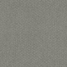 Shaw Floors Infallible Instinct Metal 00577_E9721