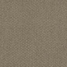Shaw Floors Infallible Instinct Abbey Stone 00771_E9721