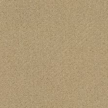 Shaw Floors Foundations Infallible Instinct Biscotti 00783_E9721