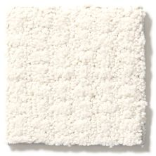 Shaw Floors Foundations Complete Control Crisp Linen 00171_E9722