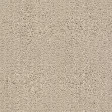 Shaw Floors Complete Control Studio Taupe 00173_E9722