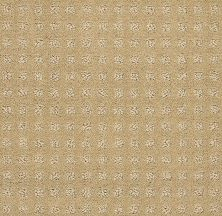 Shaw Floors Foundations Alluring Disposition Warmth 00782_E9724