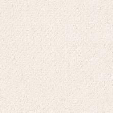 Shaw Floors Smart Thinking Crisp Linen 00171_E9725