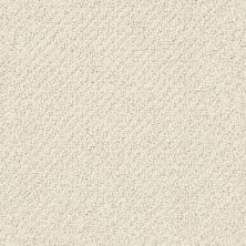 Shaw Floors Smart Thinking Alabaster 00172_E9725