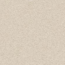 Shaw Floors Value Collections Keen Senses I Net Alabaster 00172_E9767