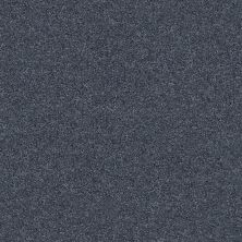 Shaw Floors Value Collections Keen Senses I Net Royal Navy 00470_E9767