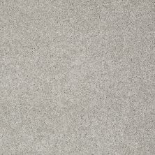 Shaw Floors Value Collections Keen Senses I Net Lady In Gray 00590_E9767