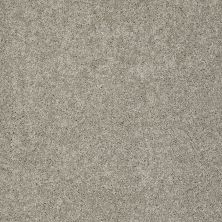 Shaw Floors Foundations Keen Senses II Net Mocha 00790_E9768