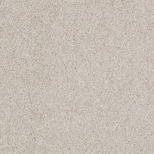 Shaw Floors Foundations Always Ready I Net Balanced Beige 00193_E9770