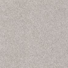 Shaw Floors Foundations Always Ready I Net Studio Taupe 00194_E9770