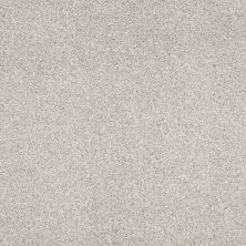 Shaw Floors Foundations Always Ready II Net Studio Taupe 00194_E9771