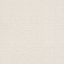 Shaw Floors Value Collections Sensible Now Net Crisp Linen 00172_E9773