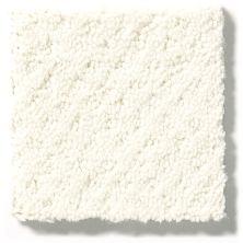 Shaw Floors Value Collections Infallible Instinct Net Crisp Linen 00171_E9774
