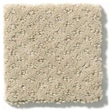 Shaw Floors Value Collections Infallible Instinct Net Studio Taupe 00173_E9774