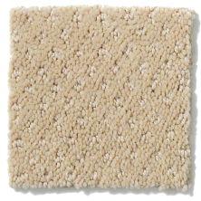 Shaw Floors Value Collections Infallible Instinct Net Soft Honey 00182_E9774