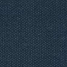 Shaw Floors Foundations Infallible Instinct Net Modern Spaces 00473_E9774