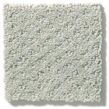 Shaw Floors Value Collections Infallible Instinct Net Offshore Mist 00477_E9774